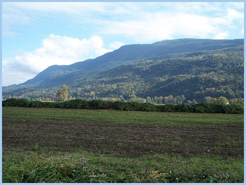 Vedder Mountain from Sumas Prairie Looking East