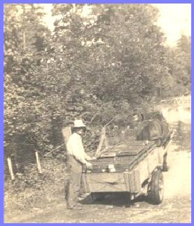 Grandfather Peter Wiensz Shipping Berries
