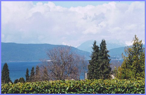 UBC - View from the Rose Garden, February